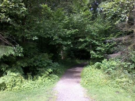 path_not_taken